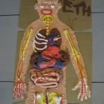 Life sized body - close up