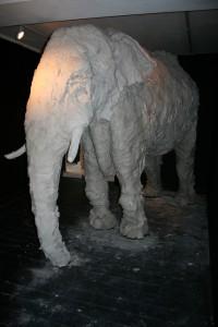 Newclay Elephant